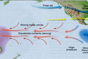 El Nino Diagram